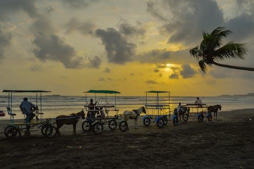 Free stock photo of atmospheric evening, beach, beach sunset, cart
