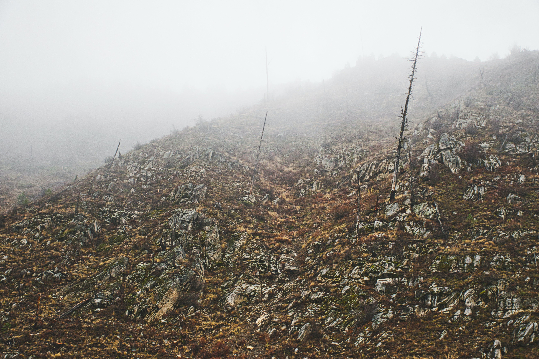 Kostenloses Stock Foto zu hügel, narbe, nebel, unfruchtbar