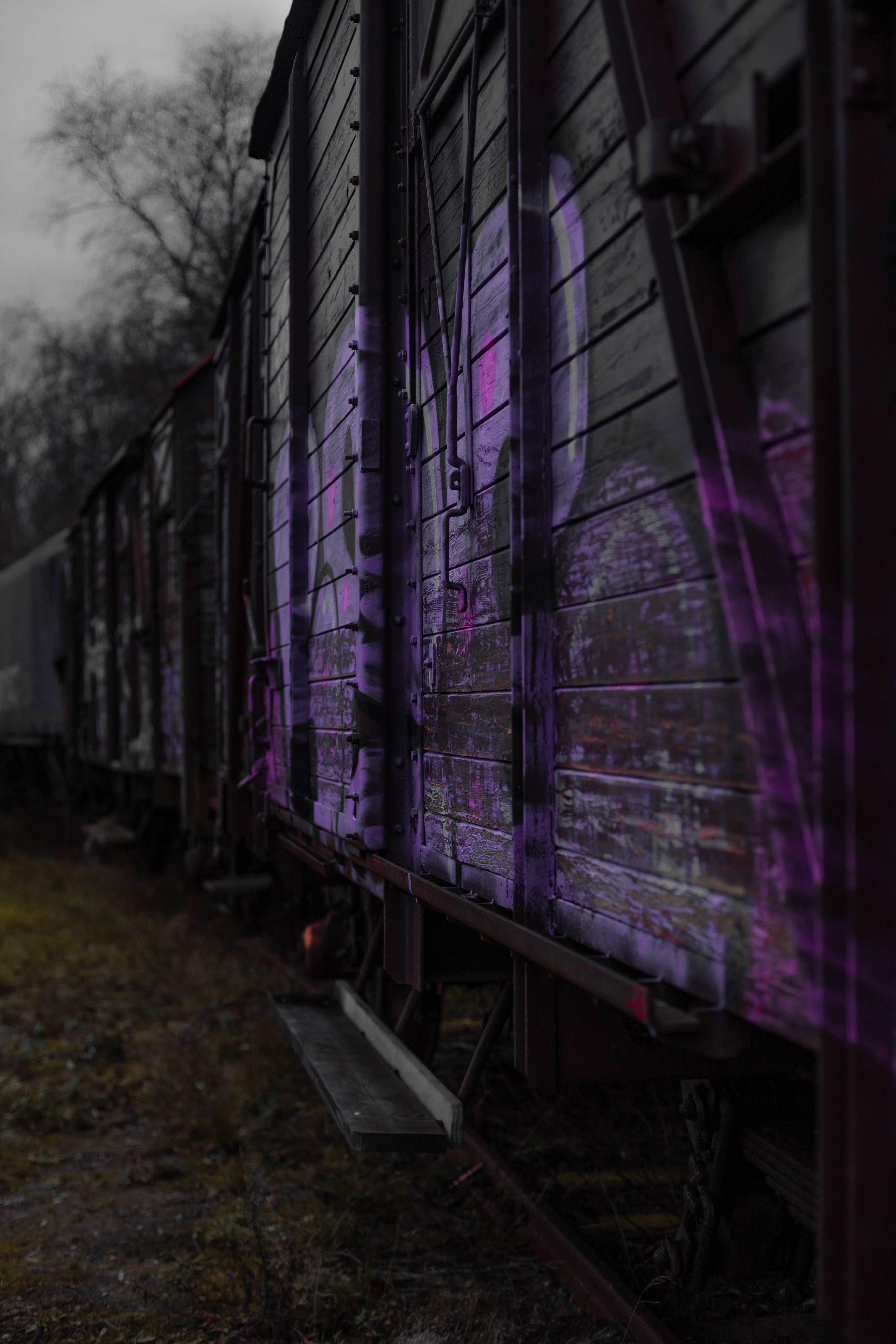 Gratis lagerfoto af forladt, grafitti, hærværk, lilla