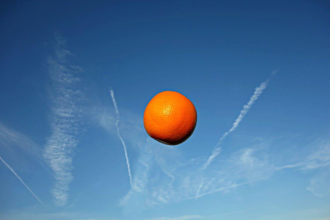 citrus, citrus fruit, diet