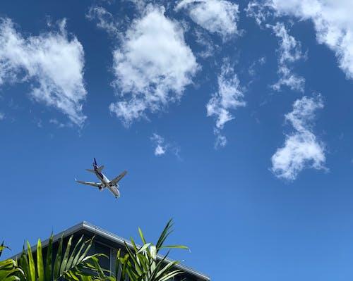 uçak içeren Ücretsiz stok fotoğraf
