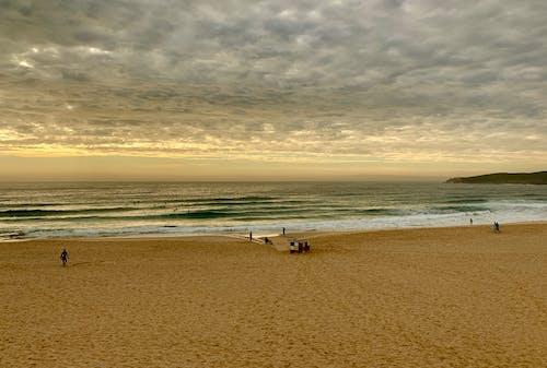 คลังภาพถ่ายฟรี ของ maroubra, ชายหาด, ชีวิตชายทะเล, ซิดนีย์