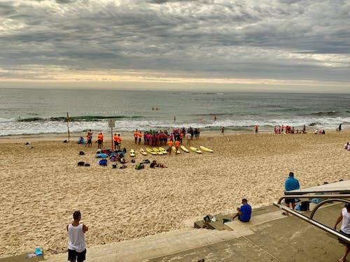 kıskaç, küçük kerpeten, plaj, plaj Hayatı içeren Ücretsiz stok fotoğraf