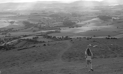 Základová fotografie zdarma na téma černobílý, holka, hřiště, krajina