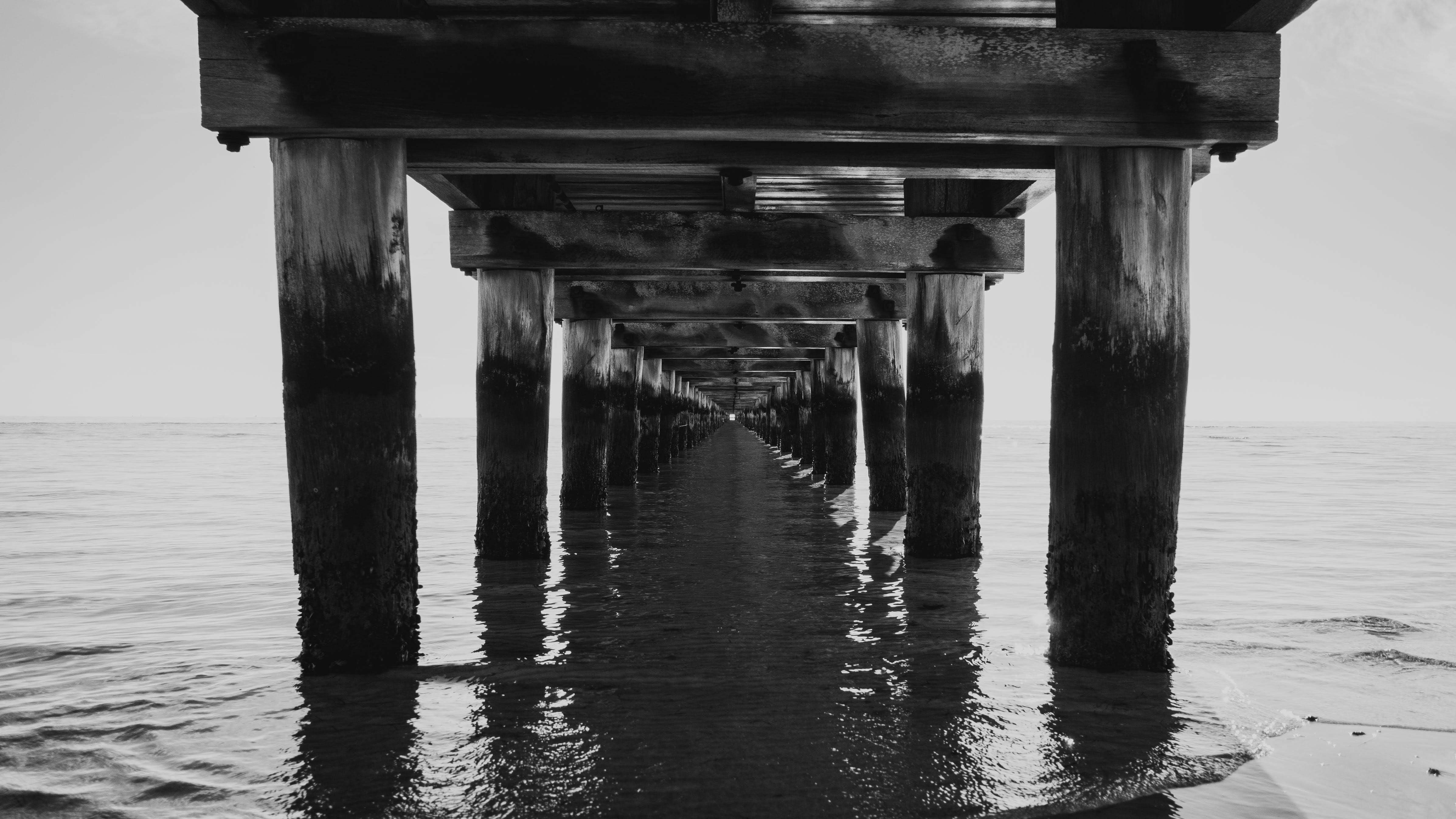 Free stock photo of beach, black and white, bw, daylight