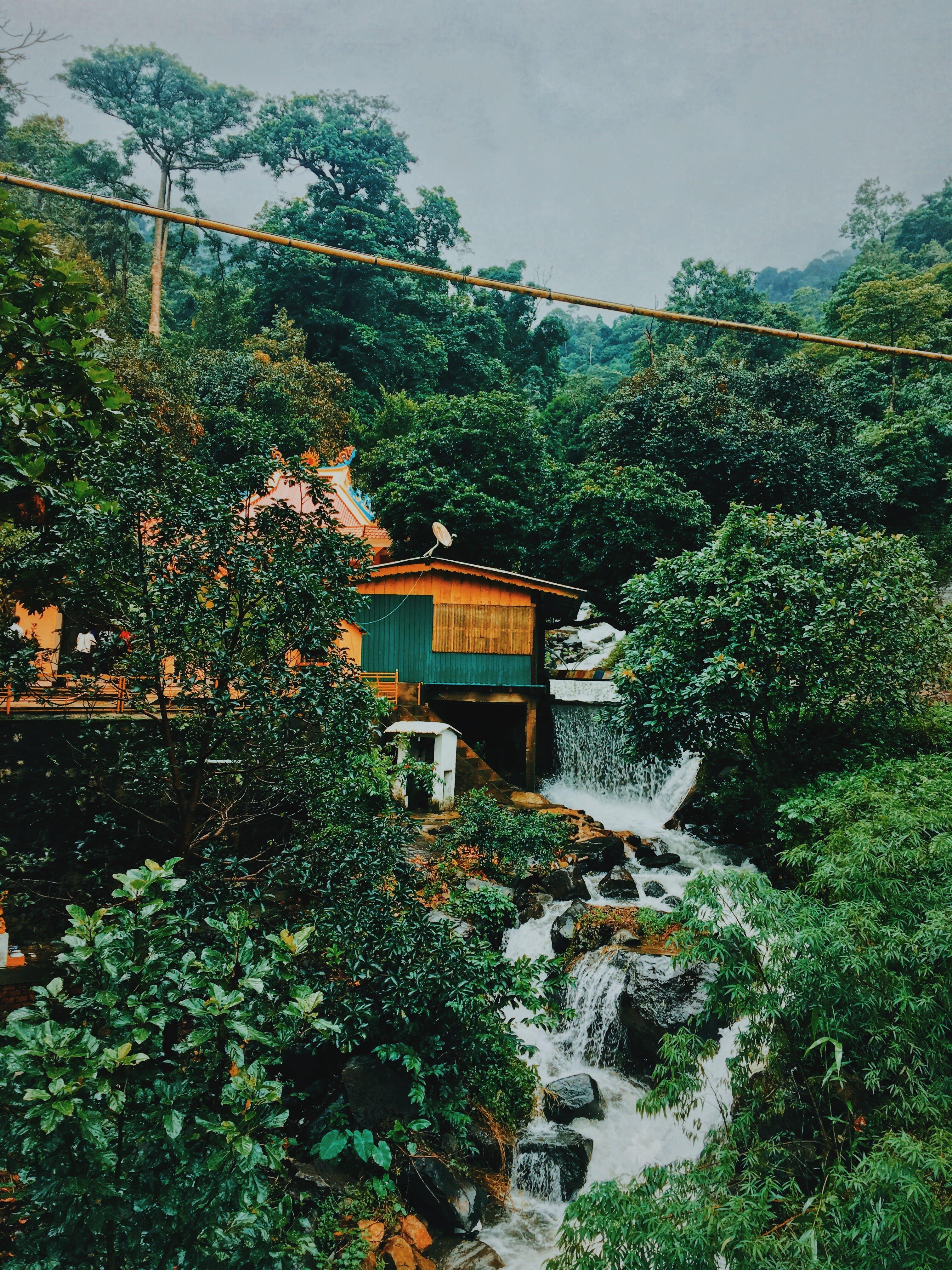Kostenloses Stock Foto zu architektur, bäume, brücke, felsen