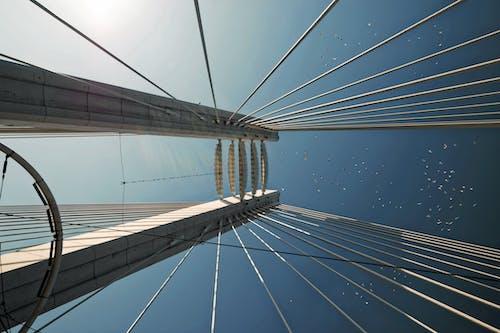 altyapı, bakış açısı, dar açılı çekim, köprü içeren Ücretsiz stok fotoğraf