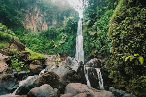 Foto stok gratis air, alam, batu, bebatuan