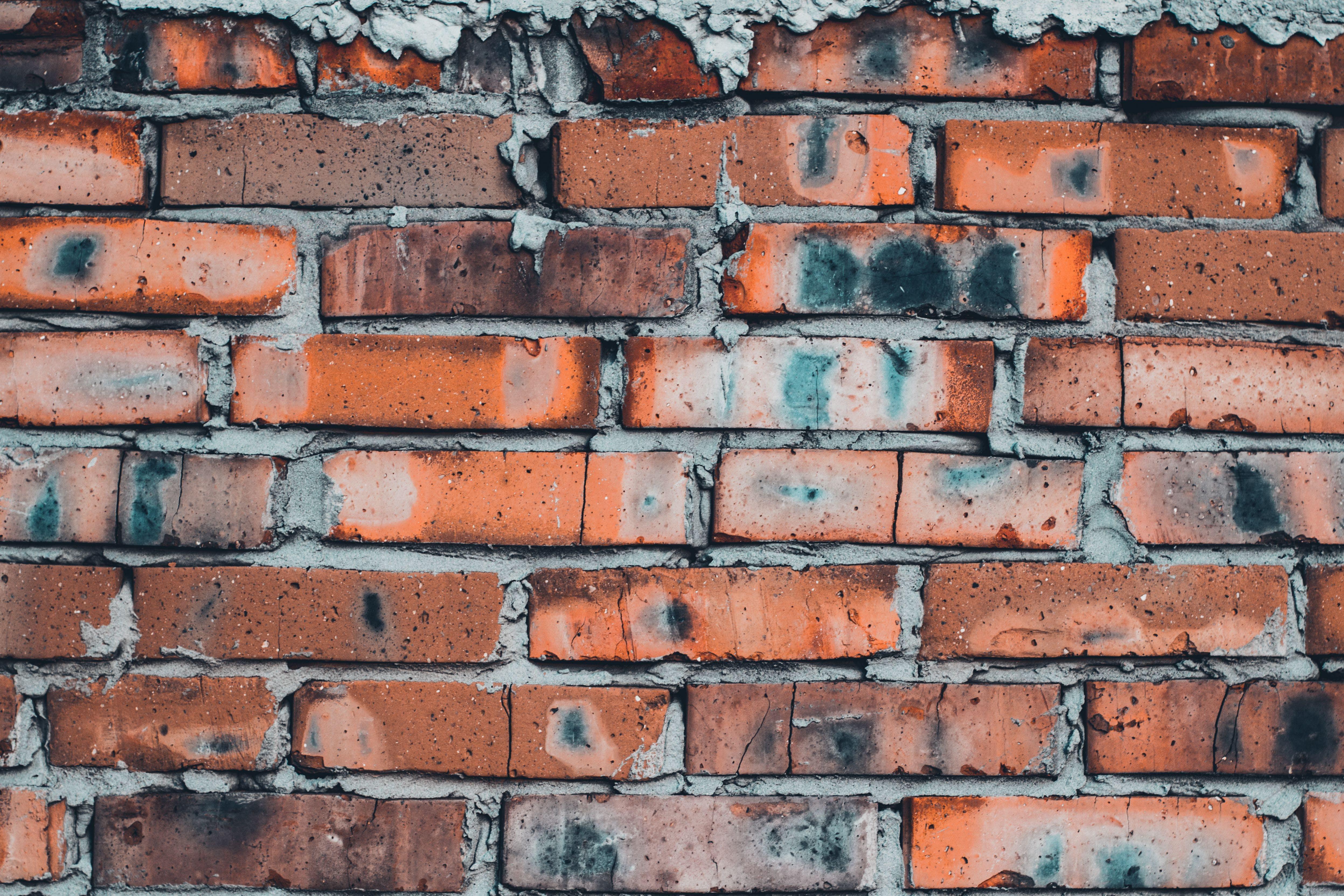 Kostenloses Stock Foto zu backsteinmauer, mauer, ziegel