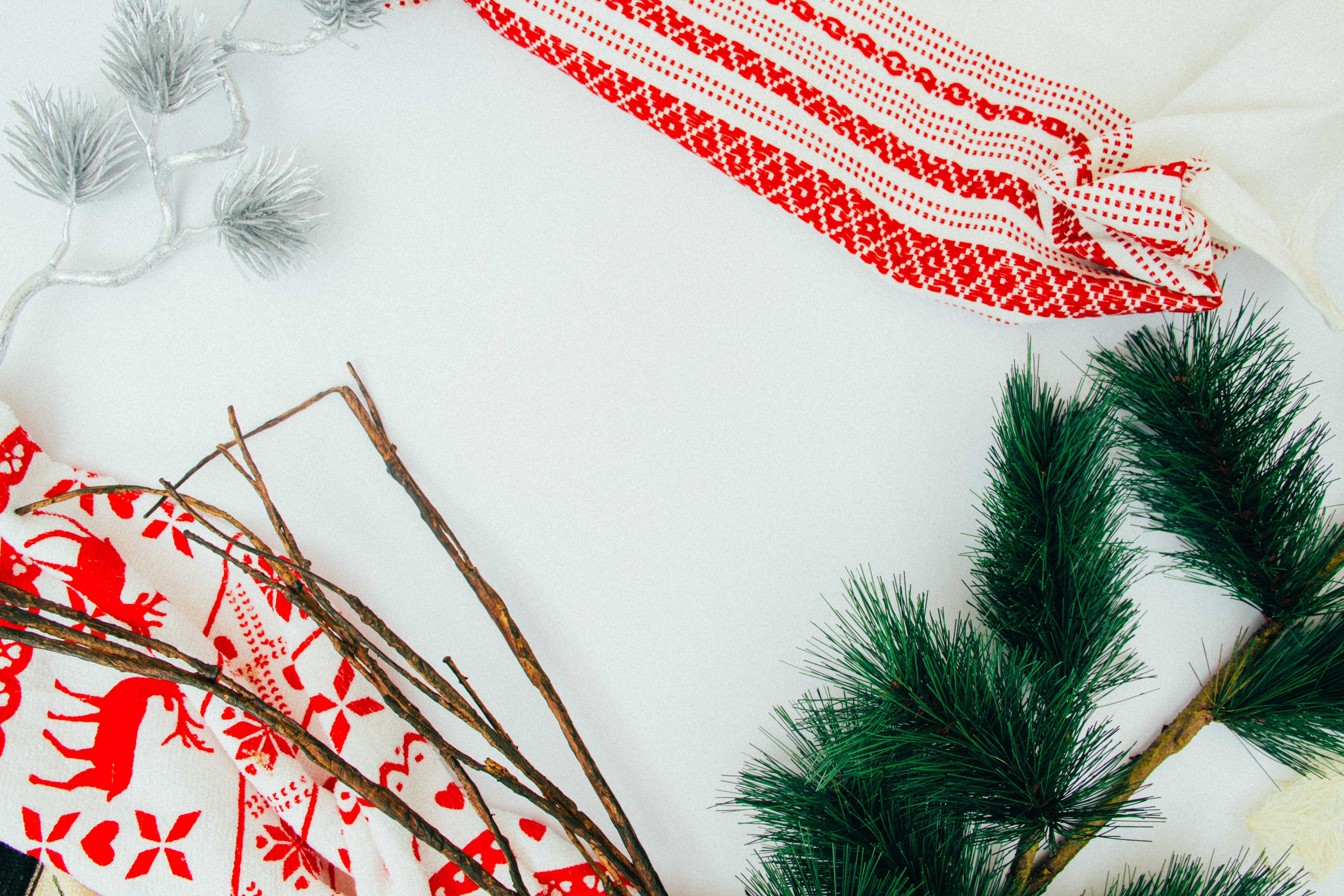 Kostenloses Stock Foto zu design, drinnen, farben, fokus