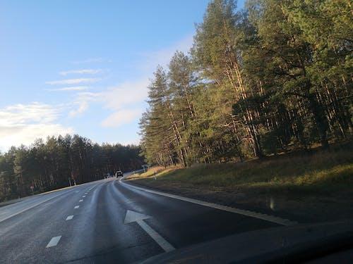 Foto d'estoc gratuïta de amb corbes, carretera, cel blau, cotxe
