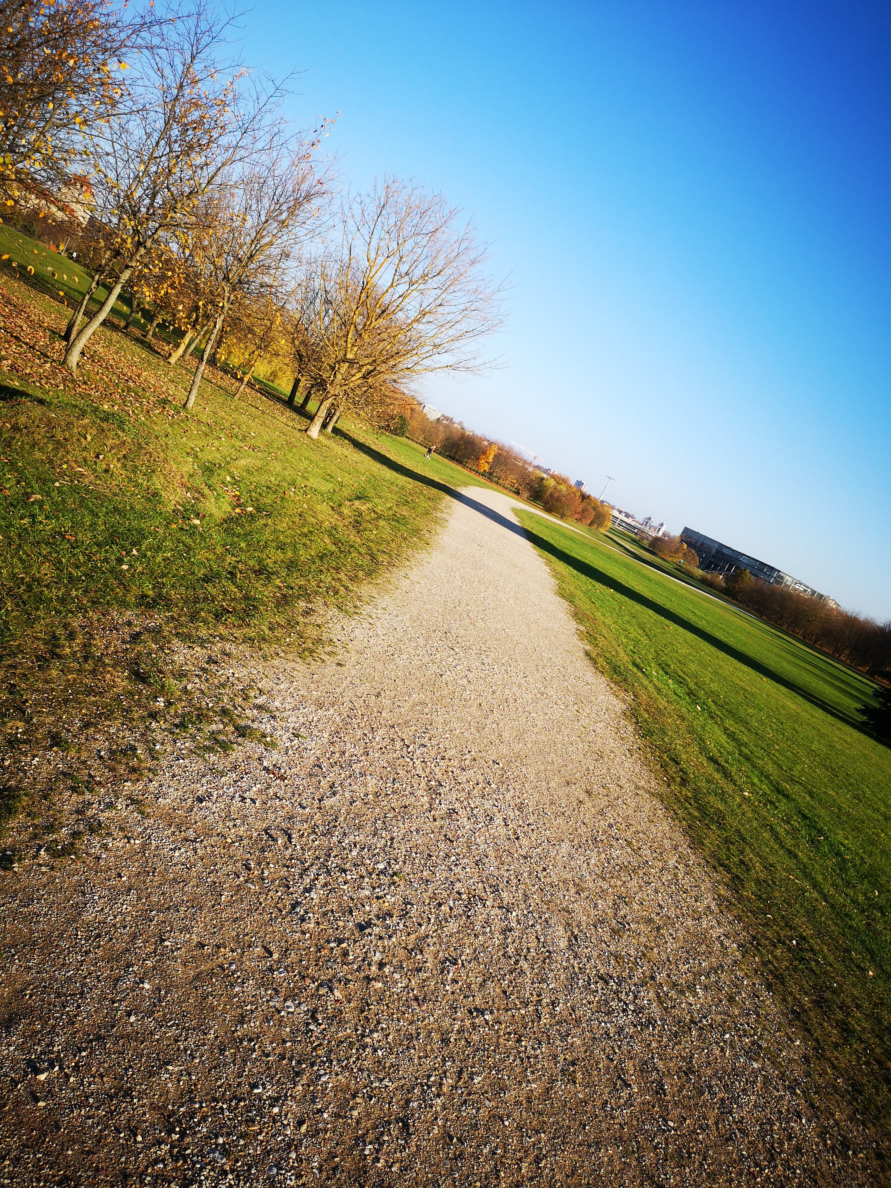 Free stock photo of blue, blue sky, orange, pathway