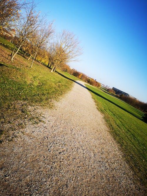 Foto d'estoc gratuïta de blau, camí, carretera, cel blau