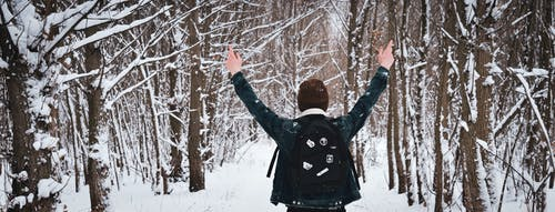 คลังภาพถ่ายฟรี ของ กางเกงยีนส์, ขาว, คริสต์มาส, ป่า