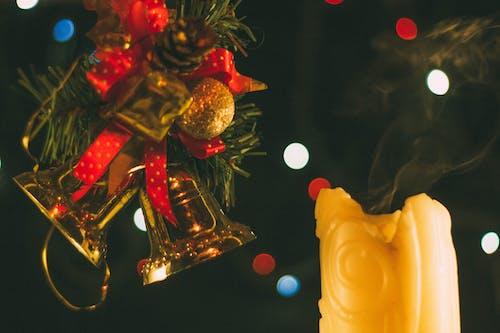 mum, Noel ağacı içeren Ücretsiz stok fotoğraf