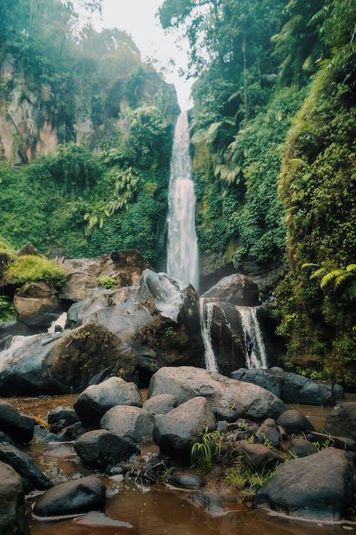 Бесплатное стоковое фото с вода, водопад, водопады, гора