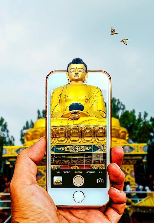 Kostenloses Stock Foto zu buddha 3d, kunst