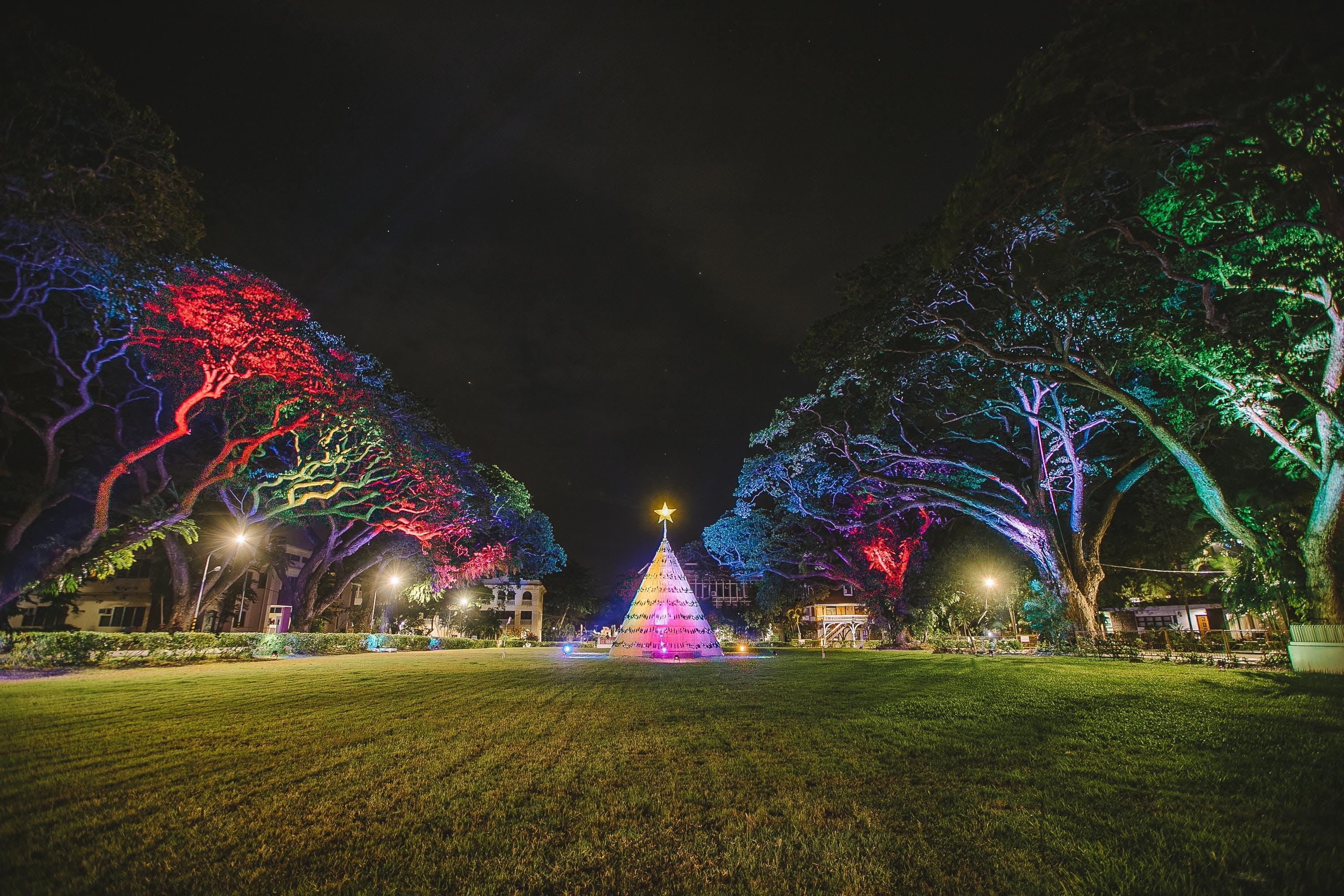 Free stock photo of christmas, lights