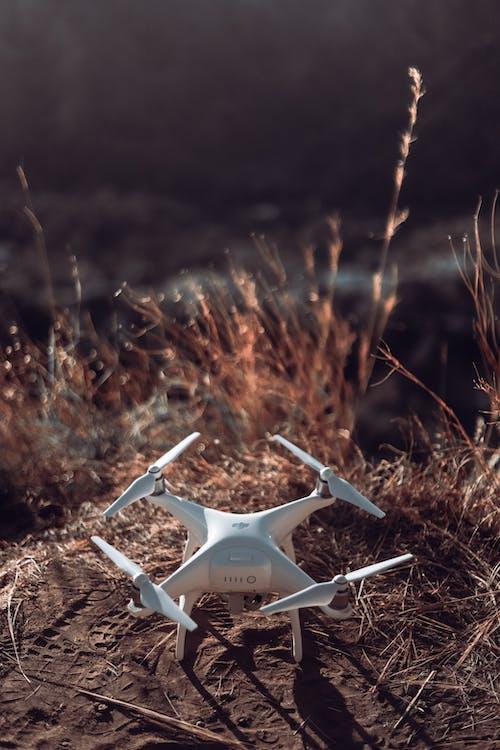 Základová fotografie zdarma na téma denní světlo, dron, krajina, příroda