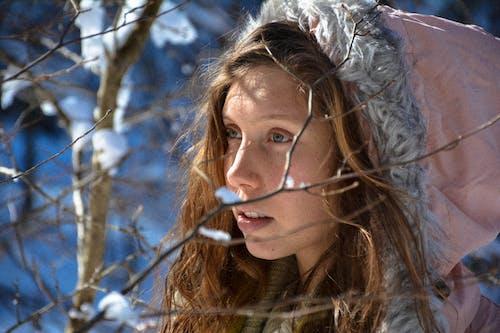 下雪, 冬季, 冬季夾克, 冬裝 的 免費圖庫相片