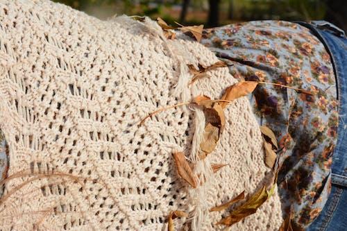 Imagine de stoc gratuită din blugi, fată, femeie, pulover