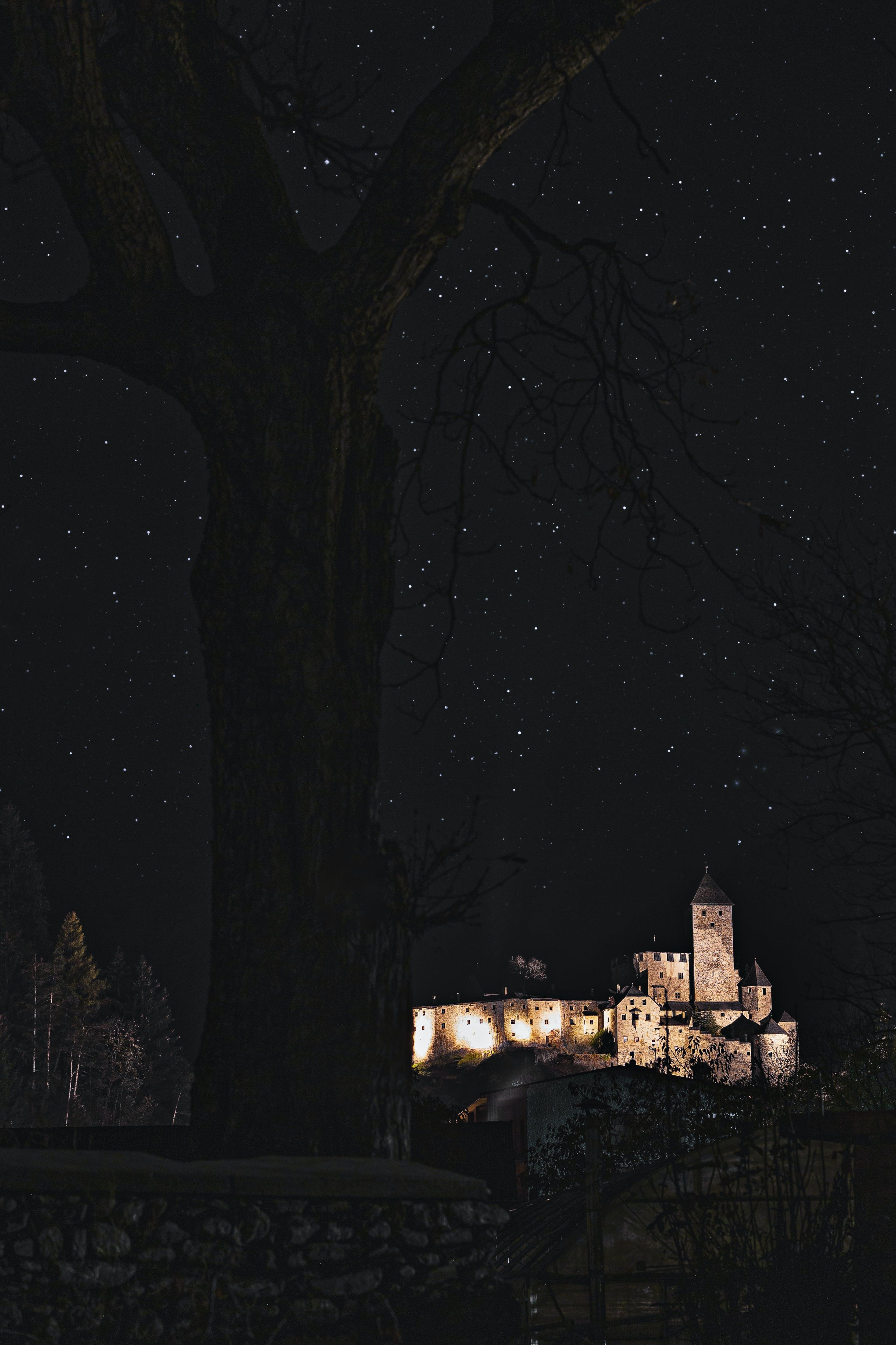 Brown Castle Under a Starry Sky