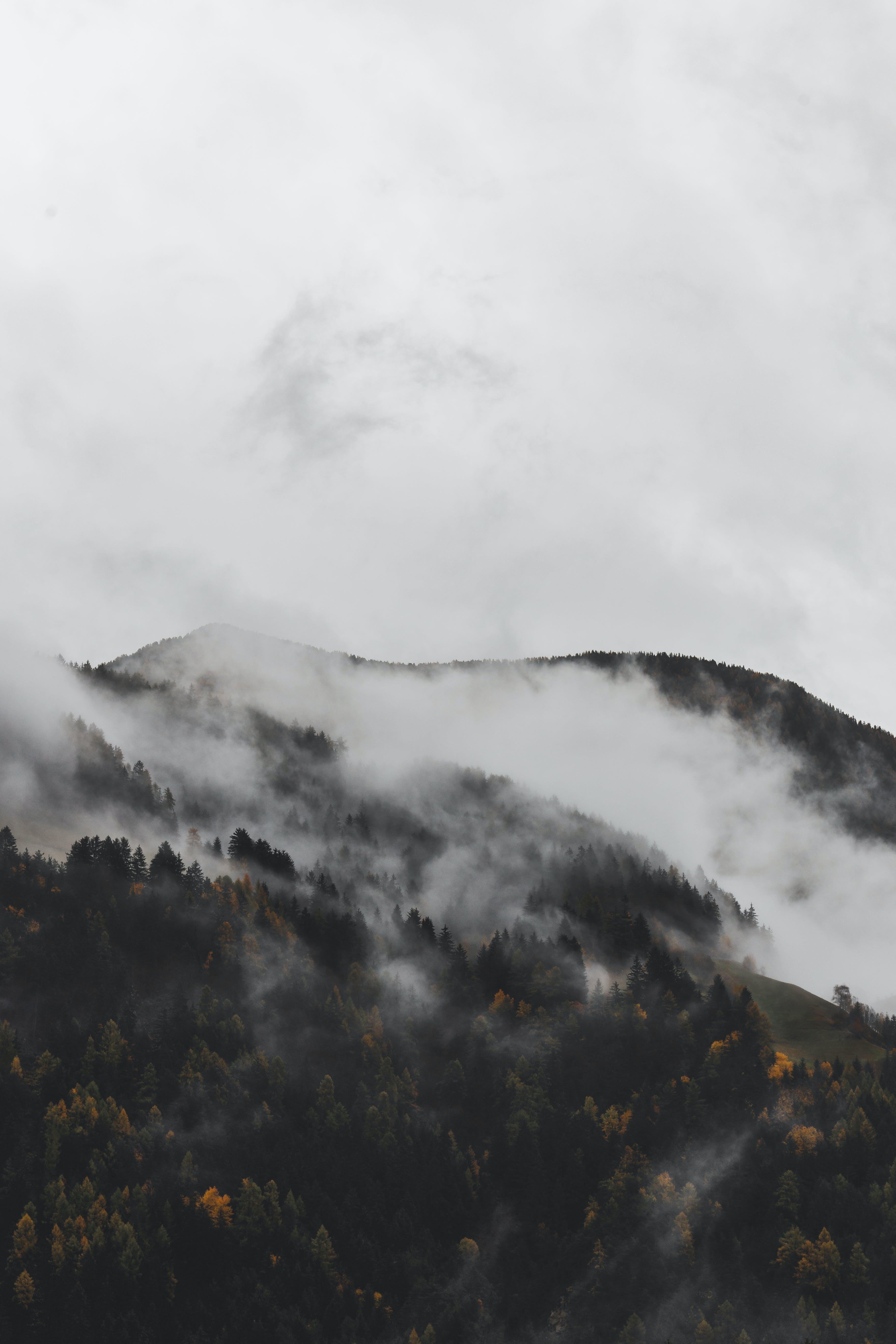 Gratis lagerfoto af bjerg, dagslys, desktop tapet, dis
