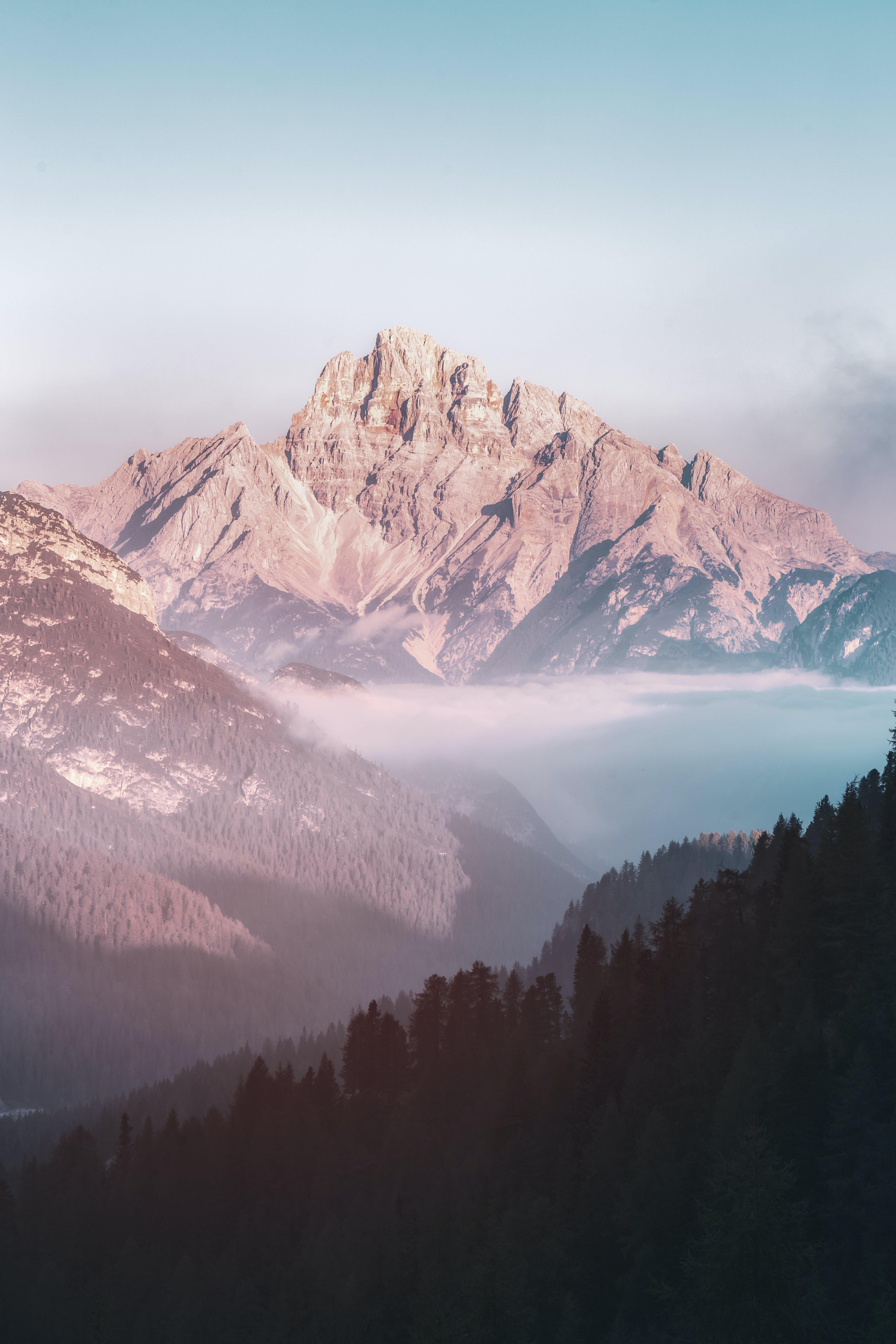 Foto d'estoc gratuïta de amb boira, boira, fons de pantalla de la natura, llum del dia