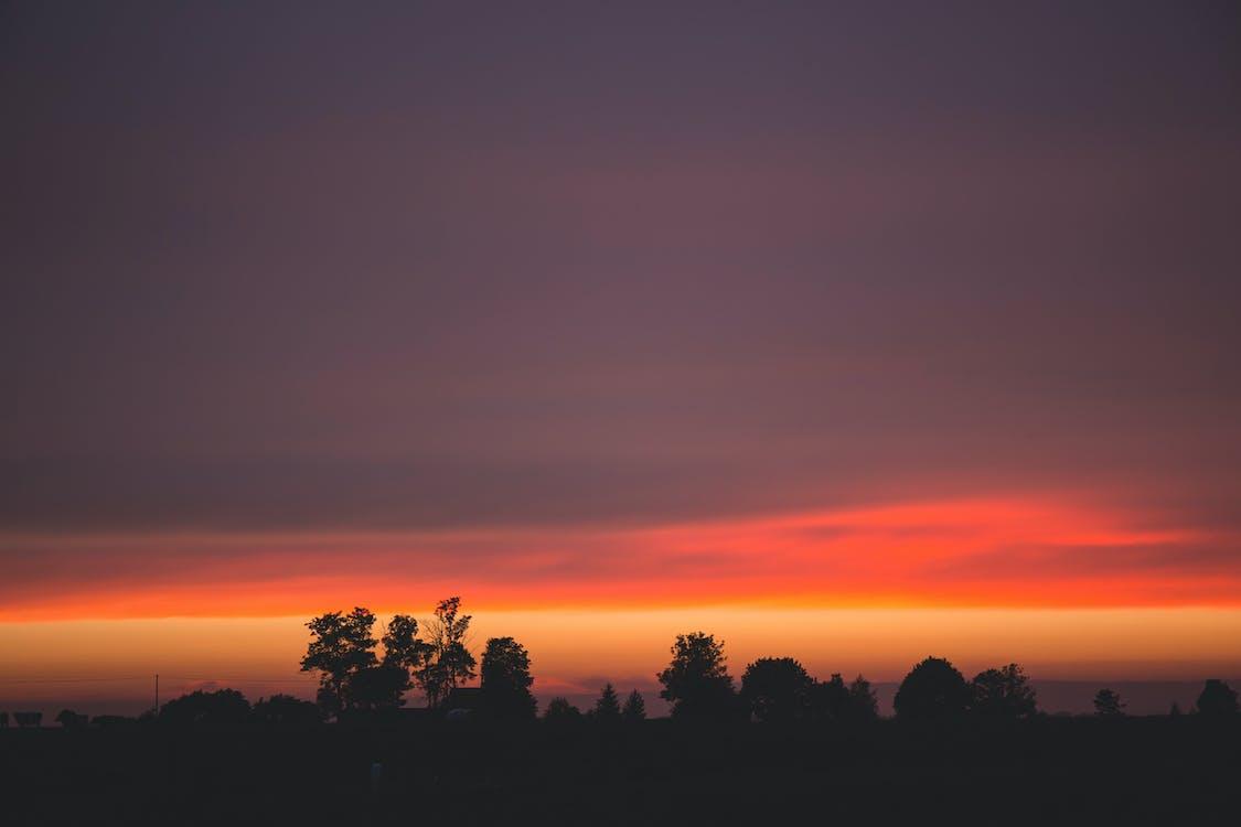 obloha, oranžová obloha, podsvícení