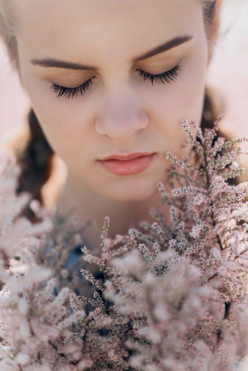 Gratis lagerfoto af attraktiv, blomster, blomstrende, close-up