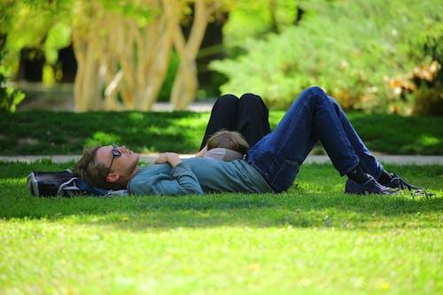 공원, 남자, 누워 있는, 들판의 무료 스톡 사진