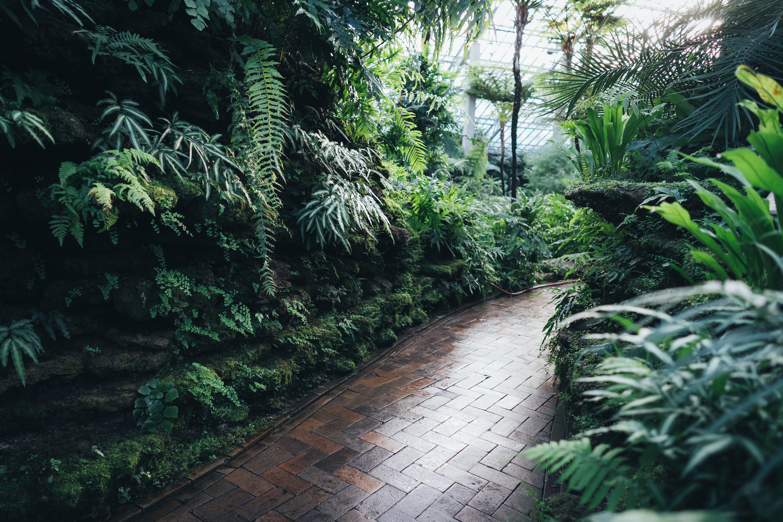 Brown Brick Garden Pathway