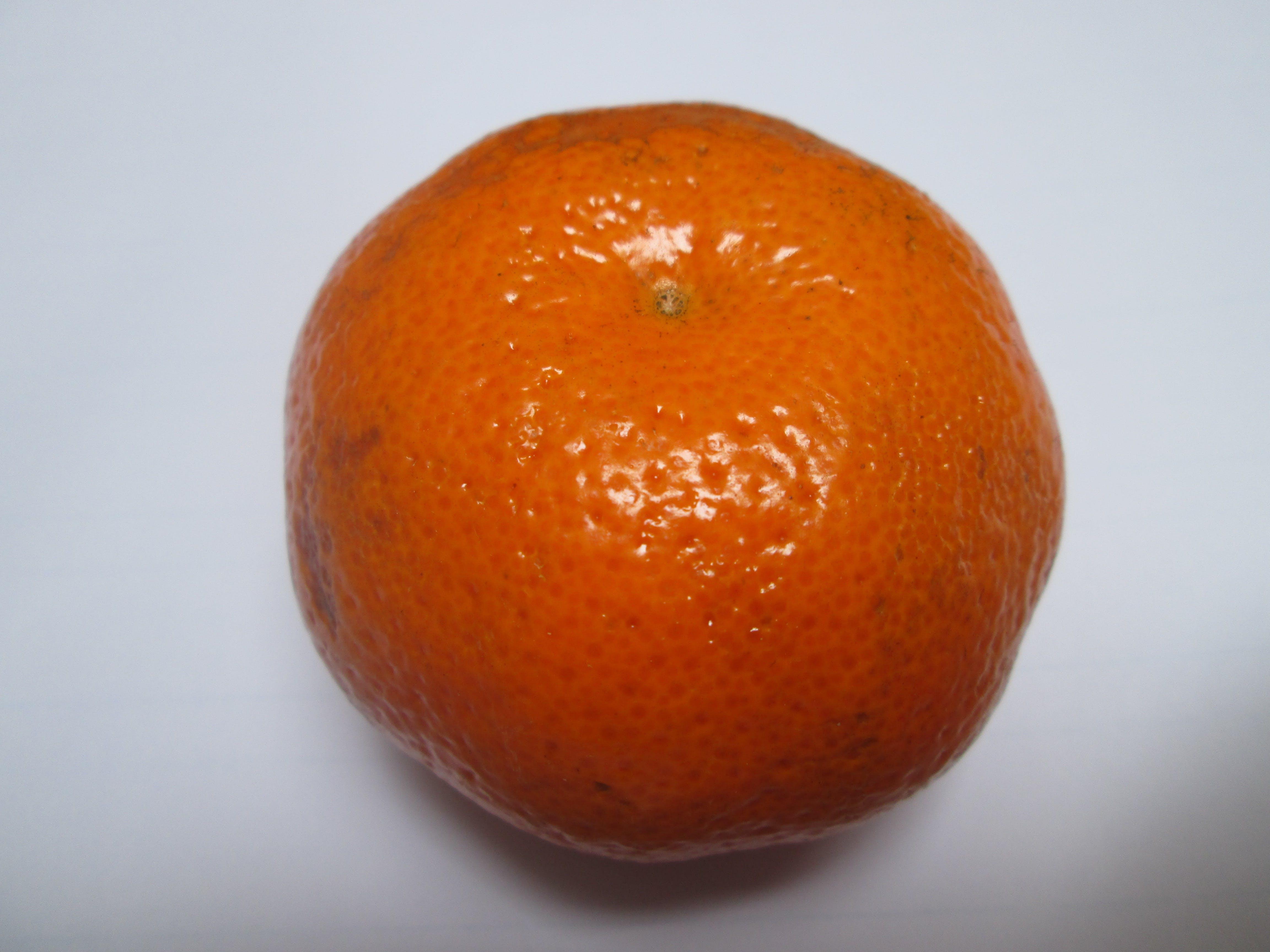 Mandarina, tangerine