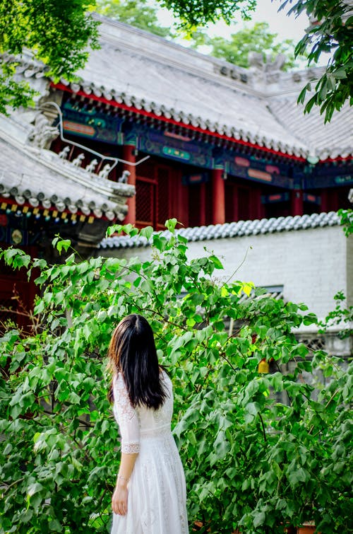 Photo of Woman Standing Beside Green-leafed Plants Near Building