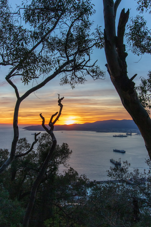 Free stock photo of Gibraltar, golden sunset, sunset