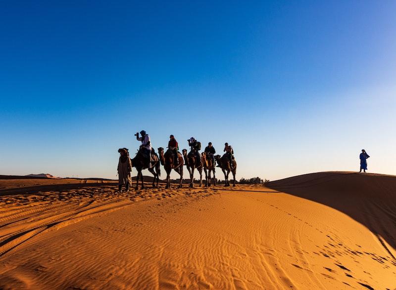 Camel Trekking in the Sahara