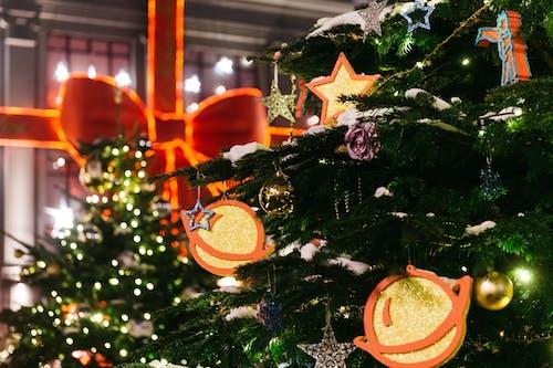 Základová fotografie zdarma na téma silvestr, vánoce, vánoční stromek