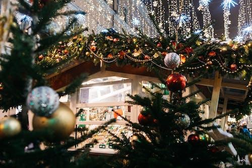 Základová fotografie zdarma na téma Moskva, silvestr, vánoce