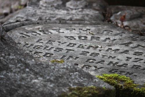 Free stock photo of grave, halloween, moody