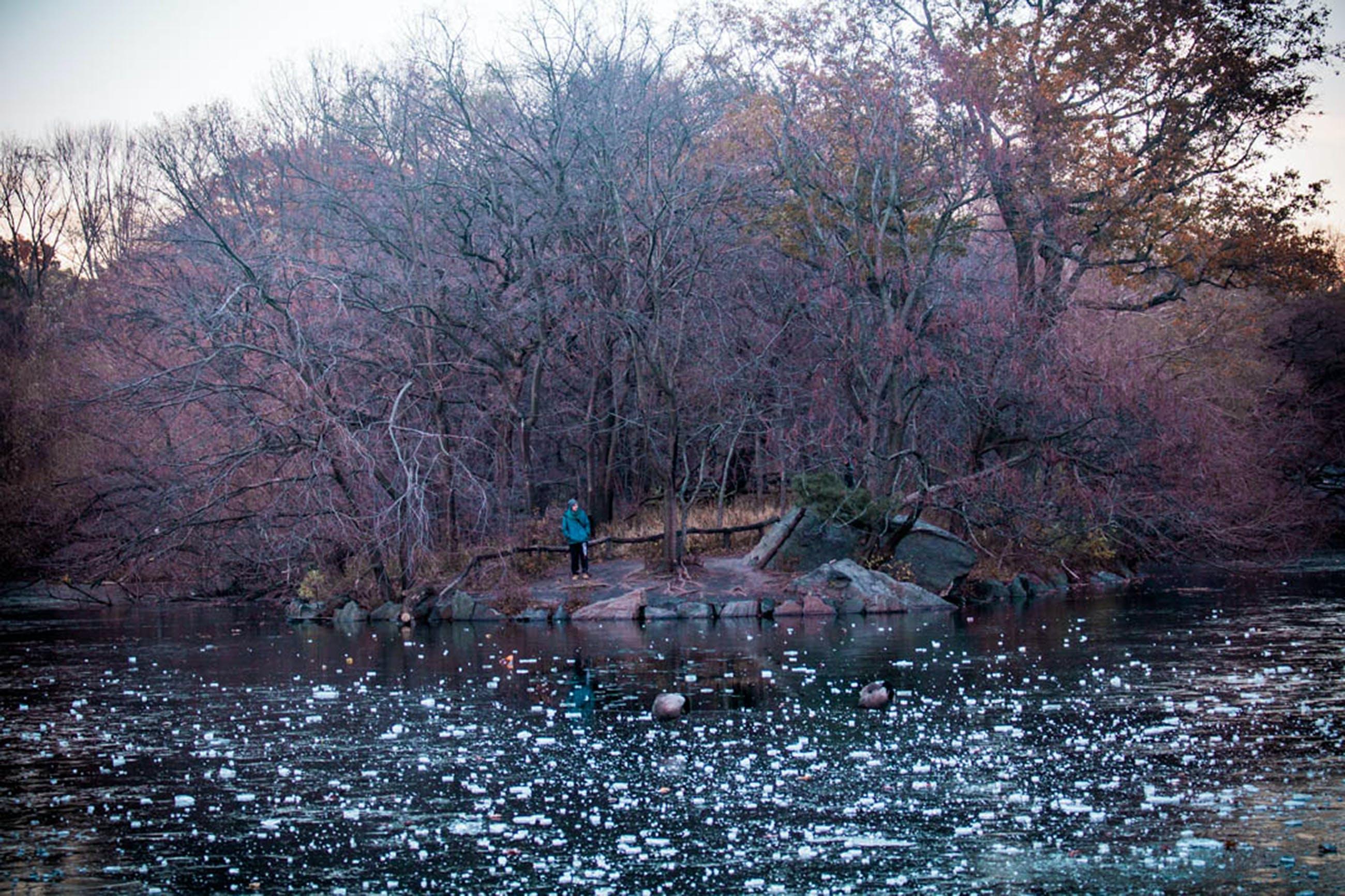 Free stock photo of #bethesda, #bethesdafountain, #centralpark, #cityparks