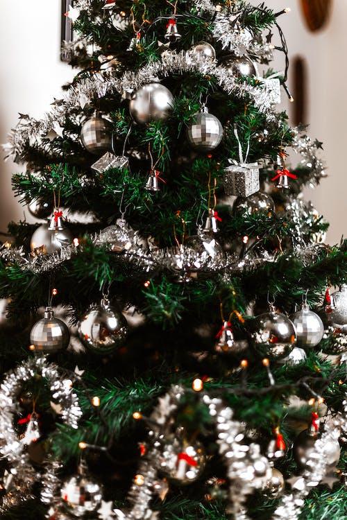 Fotos de stock gratuitas de adornos de navidad, árbol, árbol de Navidad, bolas de navidad