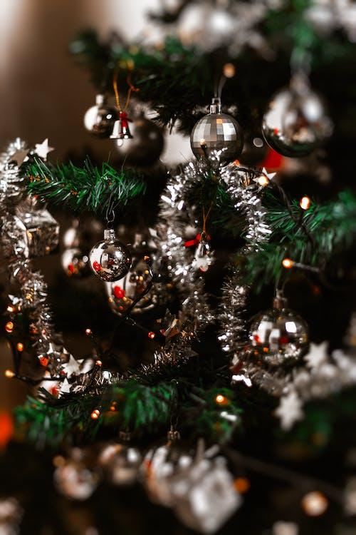 Fotos de stock gratuitas de árbol de Navidad, bolas de navidad, celebración, colgando