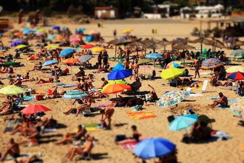 Δωρεάν στοκ φωτογραφιών με ακτή, άμμος, Άνθρωποι, διακοπές