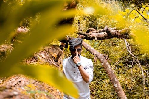 Ilmainen kuvapankkikuva tunnisteilla asenne, kiinteistö, metsä, muotimalli