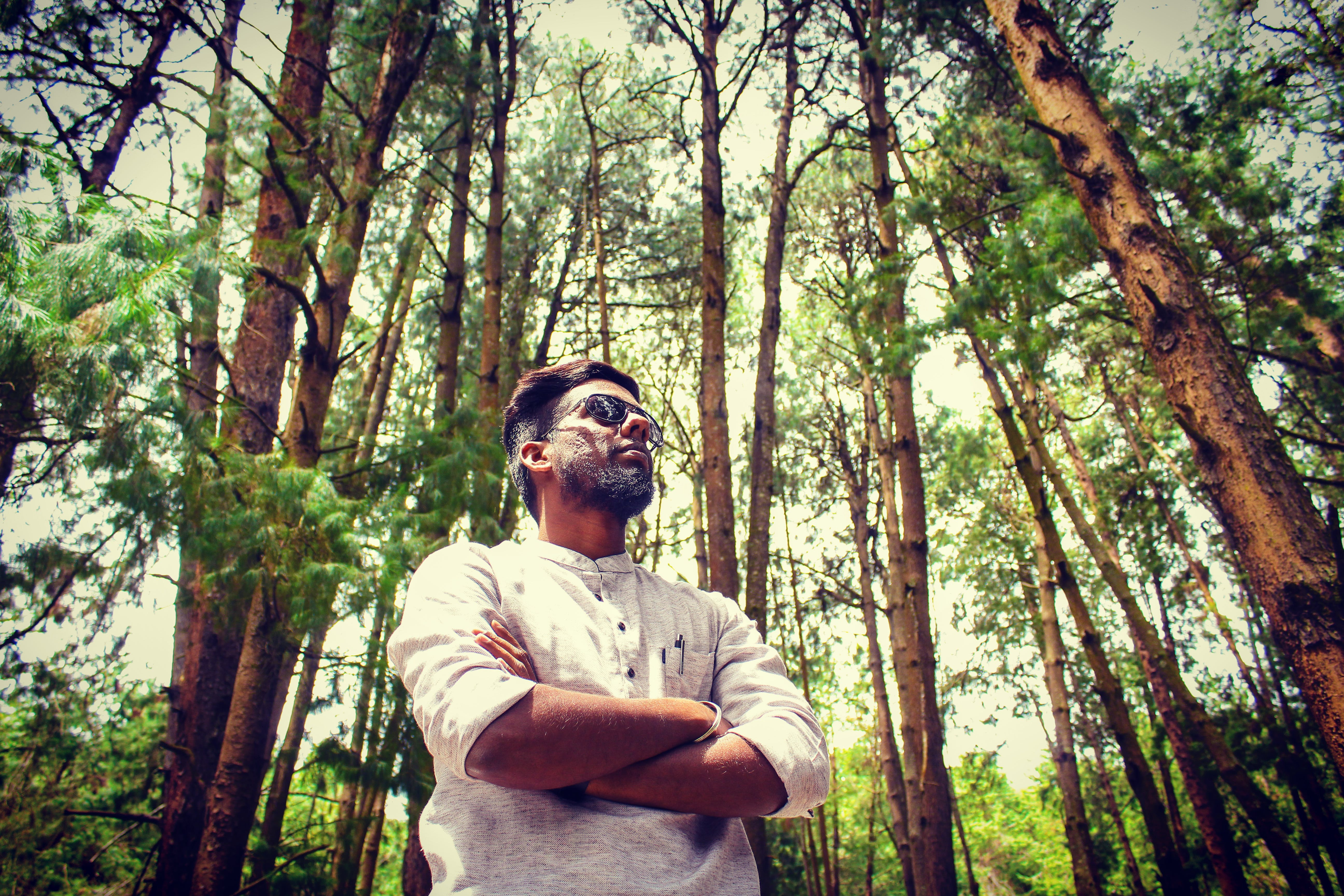 Free stock photo of fashion model, forest, india, indian boy