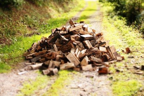 Foto stok gratis kayu cincang