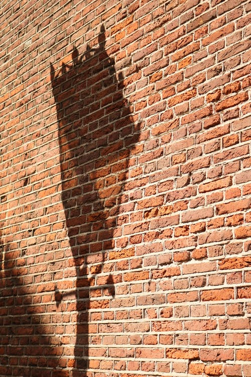 duvar, tuğla duvar içeren Ücretsiz stok fotoğraf