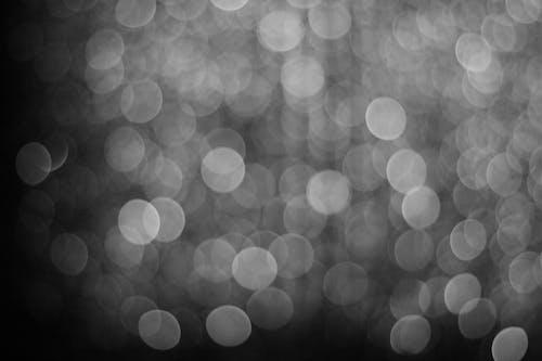 siyah ve beyaz içeren Ücretsiz stok fotoğraf