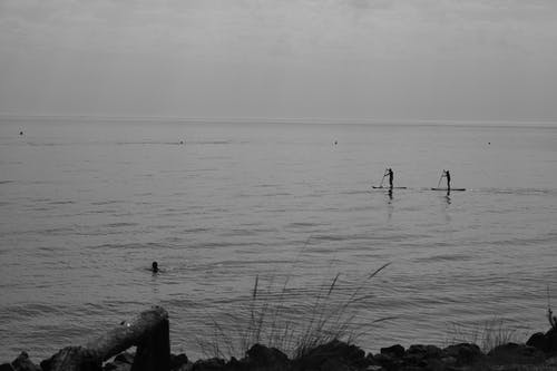 Základová fotografie zdarma na téma moře