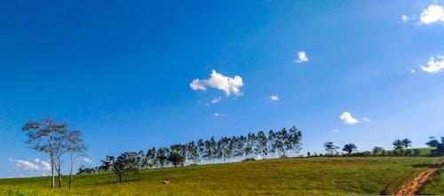 Free stock photo of brasil, cloud, green field, heaven